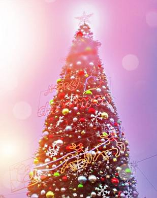 クリスマスツリー500phac.jpg